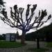 El árbol perdido